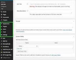 WordPress Developers Admin Access